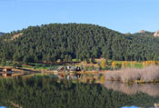 evergreen colorado forest lakehouse